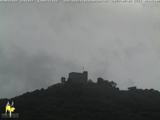 Neustadt (Weinstraße) Hambach Castle (Zoom)